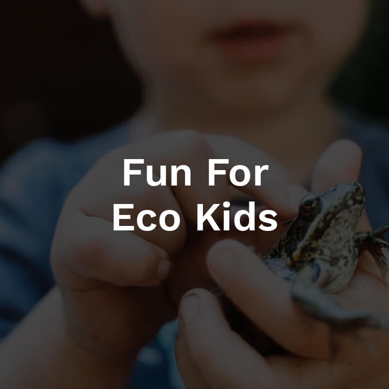 fun-for-eco-kids-2018-fi