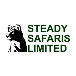 stead-safaris