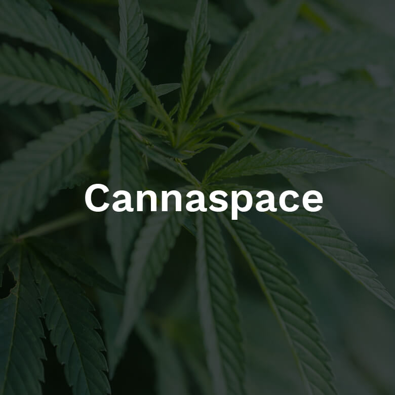 2019-cannaspace-exhibit