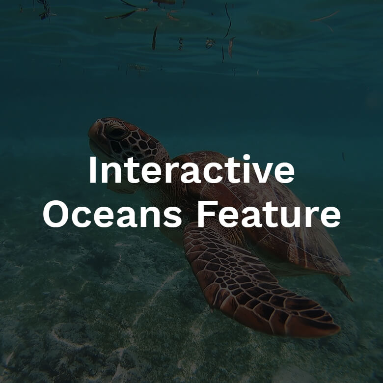 2020-attractions-780-thumbs-interactive-oceans